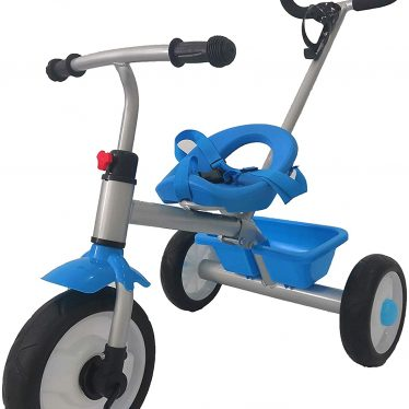 blue 2 in 1 trike